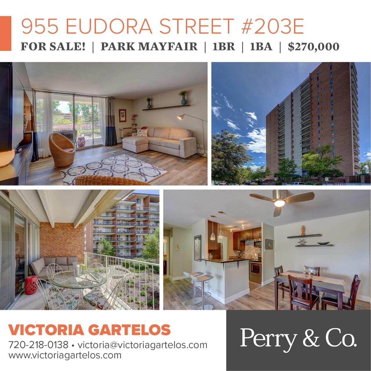 955 Eudora 203E Social Media